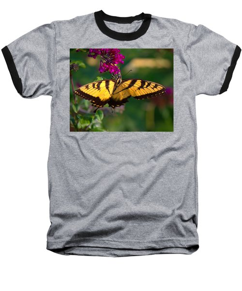 Swallowtail 1 Baseball T-Shirt