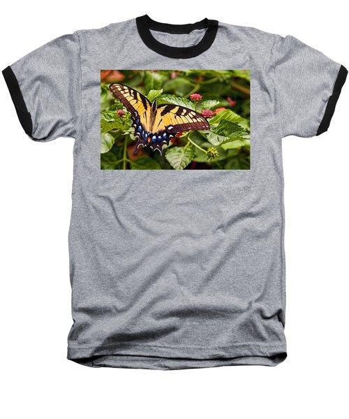 Swallowtail Beauty Baseball T-Shirt