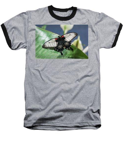 Baseball T-Shirt featuring the digital art Swallowtail Butterfly by Mae Wertz