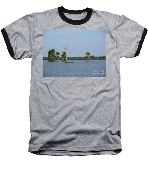 Baseball T-Shirt featuring the photograph Swamp Cypress Trees by Joseph Baril