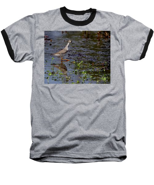 Swamp Strutting Baseball T-Shirt by Liz Masoner