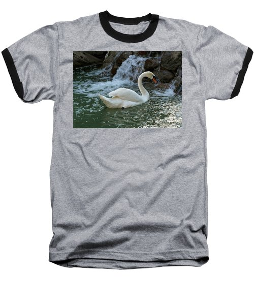Swan A Swimming Baseball T-Shirt