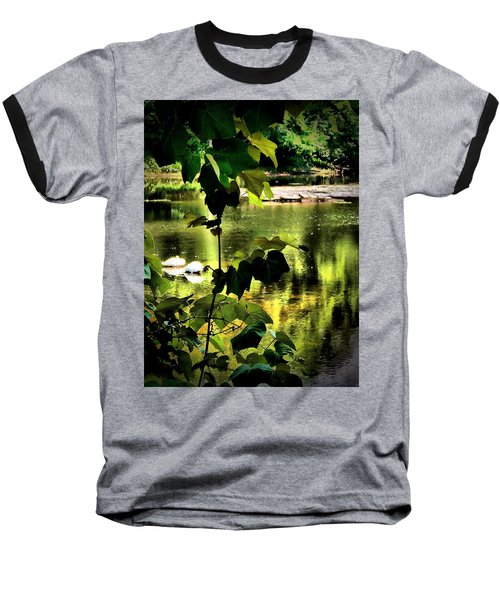 Swan Dive Baseball T-Shirt by Robert McCubbin