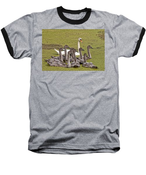Swans Family Baseball T-Shirt