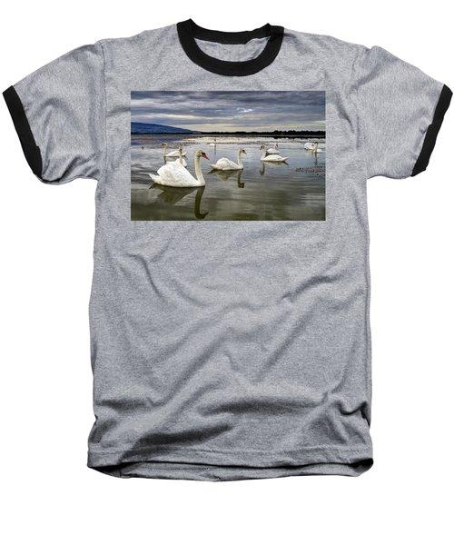 Swans Baseball T-Shirt