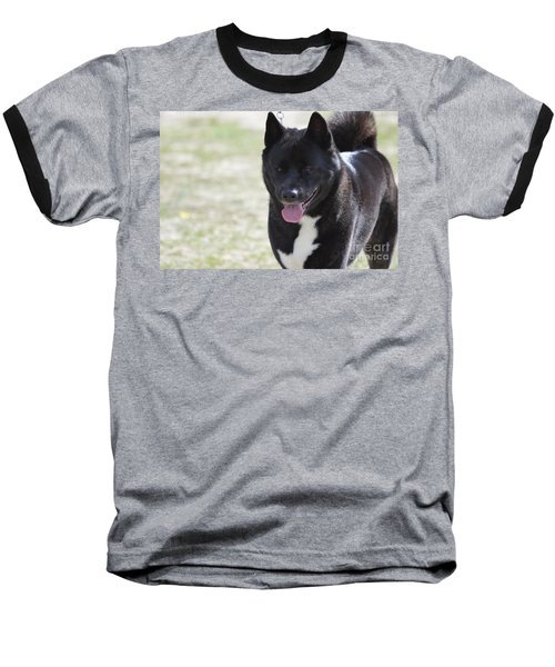 Sweet Akita Dog Baseball T-Shirt