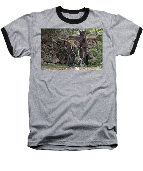 sweet heart - A tender foal wait his beloved mother  Baseball T-Shirt