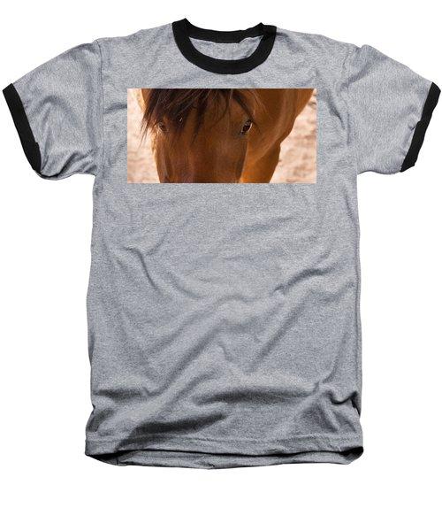 Sweet Horse Face Baseball T-Shirt