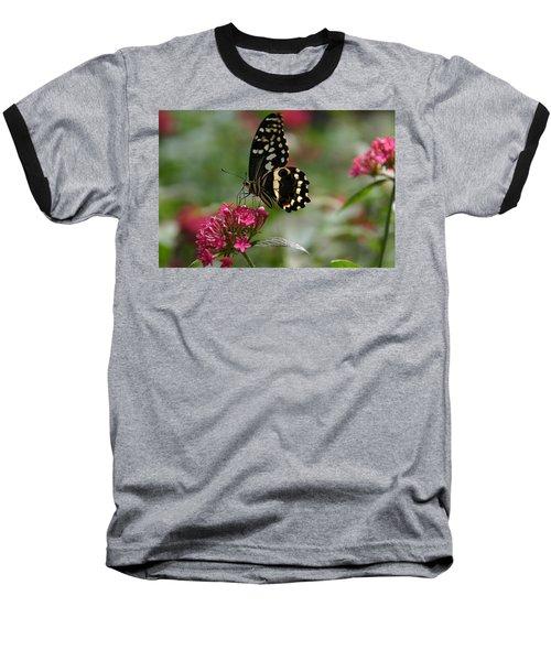 Sweet Nectar Baseball T-Shirt by Denyse Duhaime