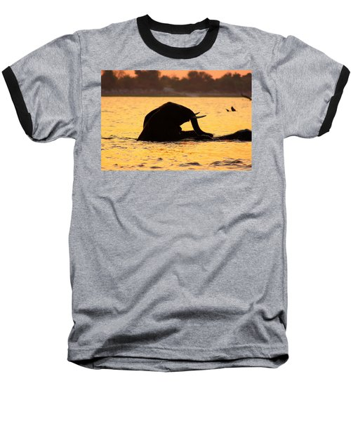 Baseball T-Shirt featuring the photograph Swimming Kalahari Elephants by Amanda Stadther