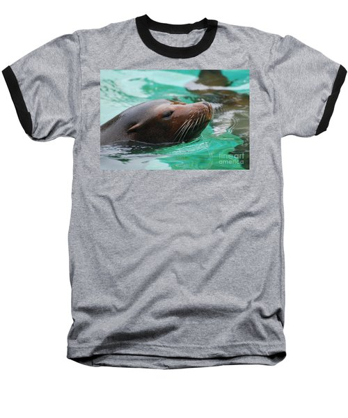 Swimming Sea Lion Baseball T-Shirt by DejaVu Designs