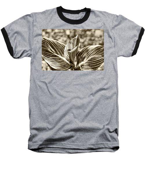 Swirls And Stripes Baseball T-Shirt