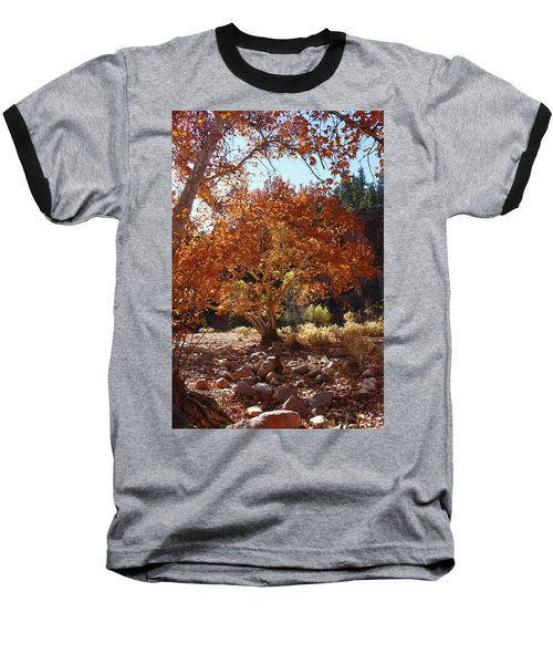 Sycamore Trees Fall Colors Baseball T-Shirt by Tom Janca