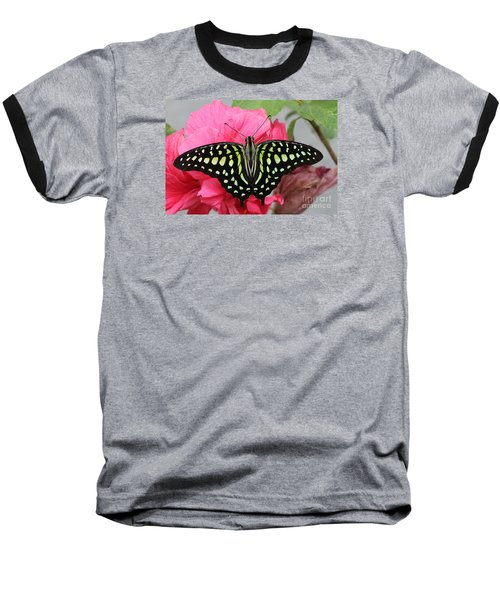 Baseball T-Shirt featuring the photograph Tailed Jay Butterfly #6 by Judy Whitton
