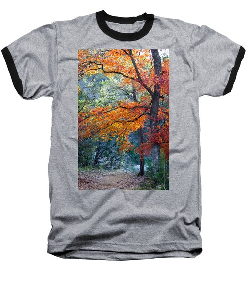 Take A Bough Baseball T-Shirt by Debbie Karnes