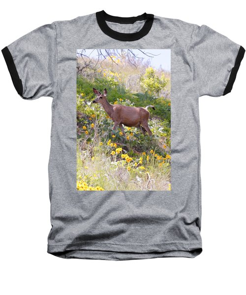 Taking A Stroll In The Country Baseball T-Shirt by Athena Mckinzie