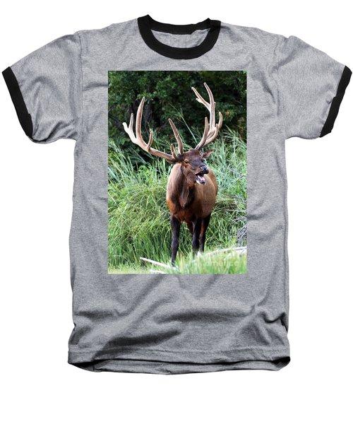 Talk To Me  Baseball T-Shirt