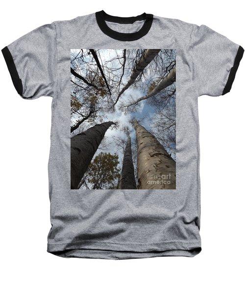 Tall Birch Circle Baseball T-Shirt