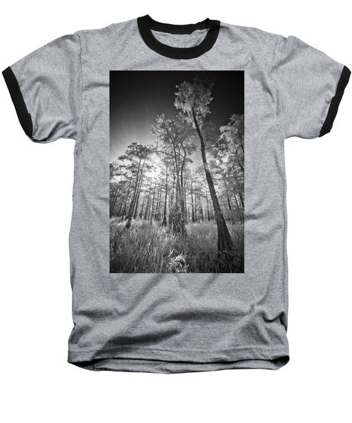 Tall Cypress Trees Baseball T-Shirt