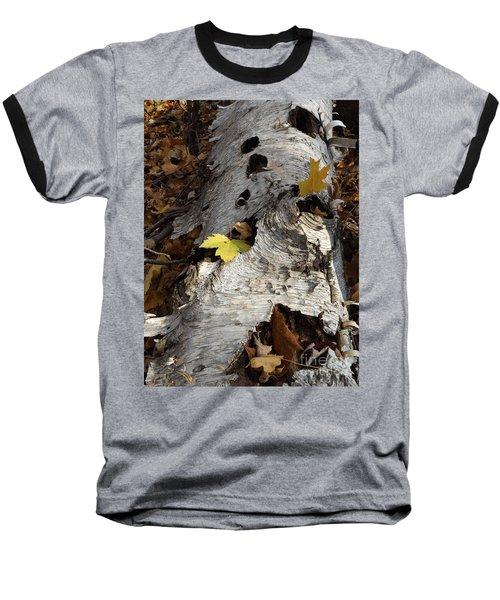 Tall Fallen Birch With Leaves Baseball T-Shirt