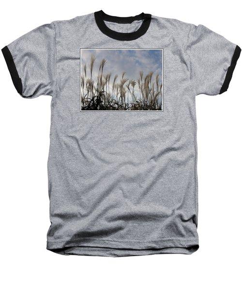 Tall Grasses And Blue Skies Baseball T-Shirt by Dora Sofia Caputo Photographic Art and Design