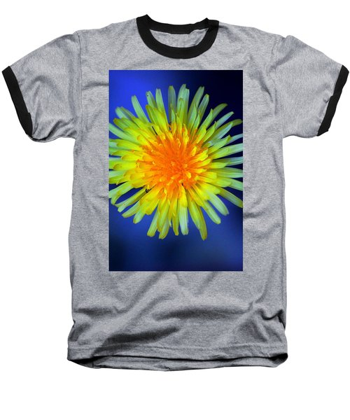 Taraxacum Baseball T-Shirt by Aaron Berg