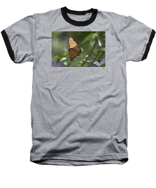 Tawny Emperor On Hibiscus Baseball T-Shirt by Shelly Gunderson