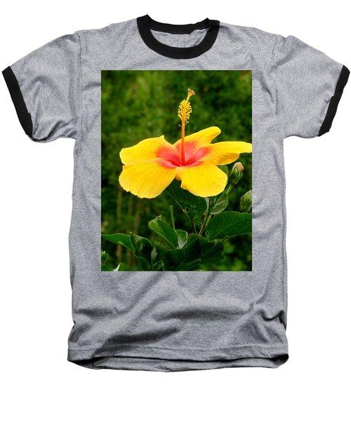 Tequila Sunrise Baseball T-Shirt