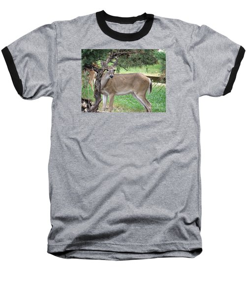 Baseball T-Shirt featuring the photograph Texas Beauty - White Tail Doe by Ella Kaye Dickey