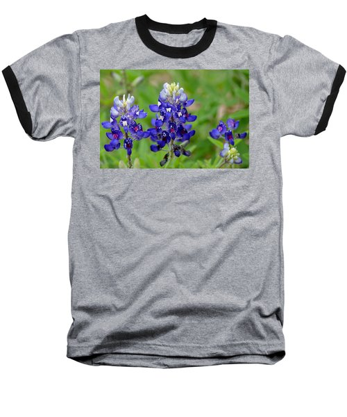 Texas Bluebonnets Baseball T-Shirt by Debra Martz