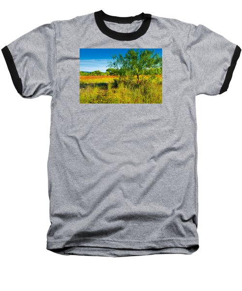 Texas Hill Country Wildflowers Baseball T-Shirt by Darryl Dalton