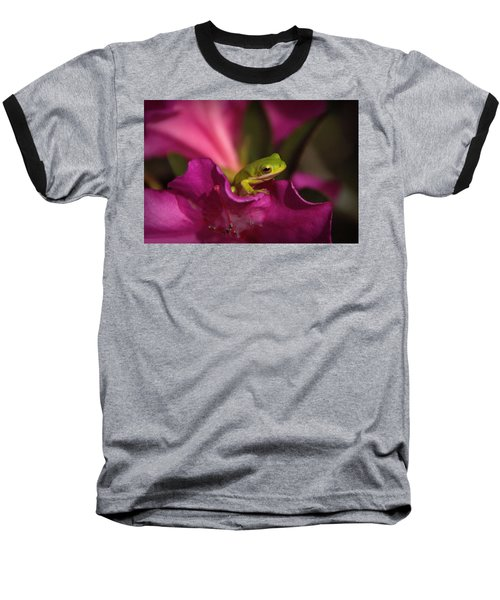 The Azalea Bed Baseball T-Shirt by Charlotte Schafer