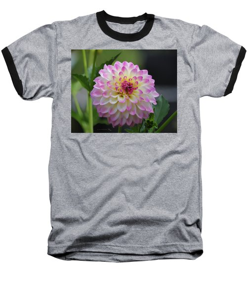 The Beautiful Dahlia Baseball T-Shirt