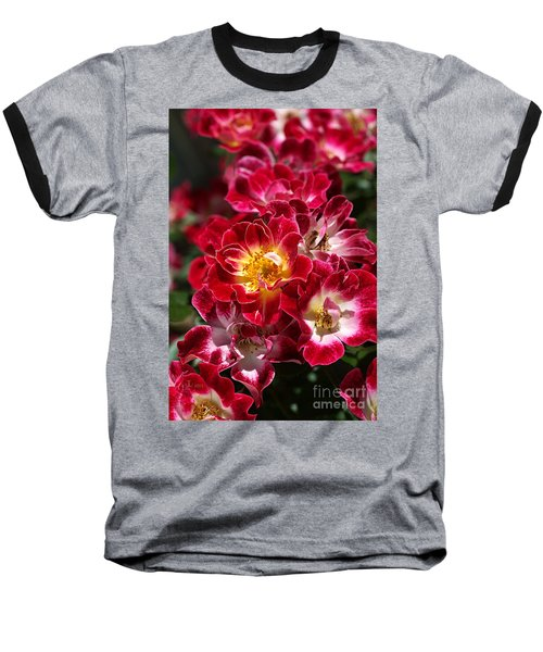 The Beauty Of Carpet Roses  Baseball T-Shirt