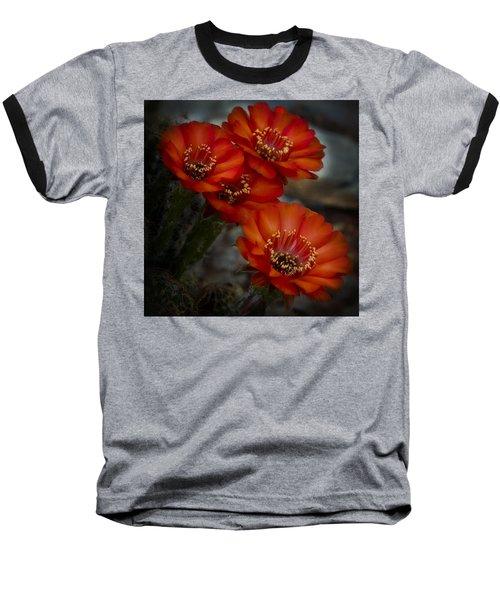 The Beauty Of Red Baseball T-Shirt by Saija  Lehtonen