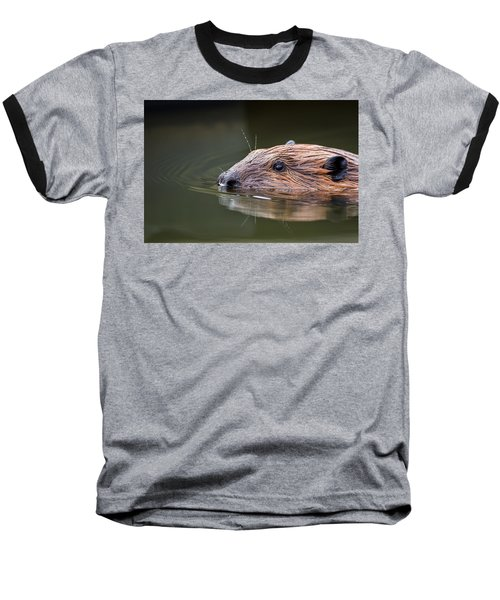 The Beaver Baseball T-Shirt by Bill Wakeley