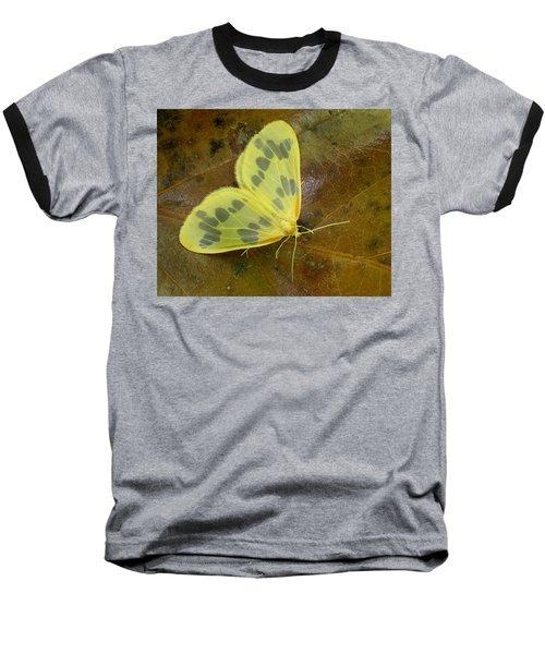 The Beggar Moth Baseball T-Shirt