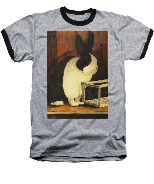 The Black And White Dutch Rabbit  2 Baseball T-Shirt