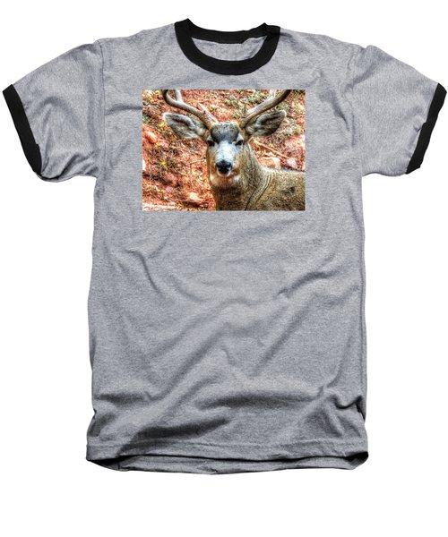The Buck I Baseball T-Shirt by Lanita Williams