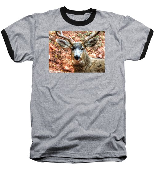 The Buck I Baseball T-Shirt