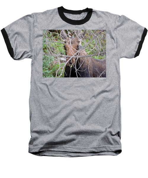 Baseball T-Shirt featuring the photograph The Calf by Lynn Sprowl