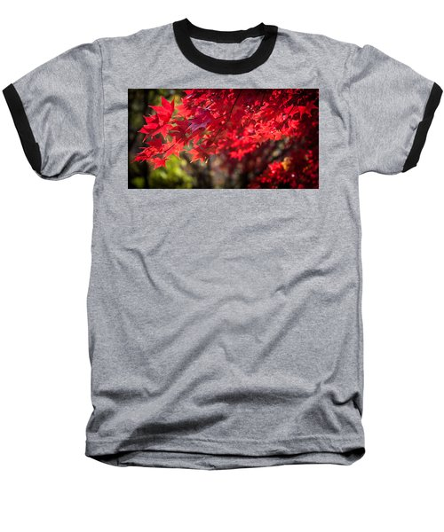 The Color Of Fall Baseball T-Shirt by Patrice Zinck