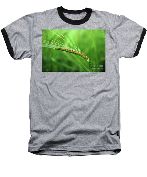 The Corn Baseball T-Shirt