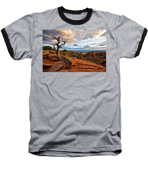 The Crooked Old Tree Baseball T-Shirt by Ronda Kimbrow
