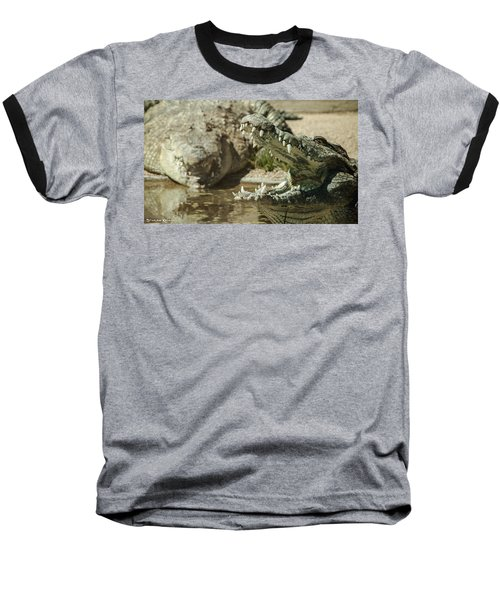Baseball T-Shirt featuring the photograph The Fool Crocodile by Stwayne Keubrick