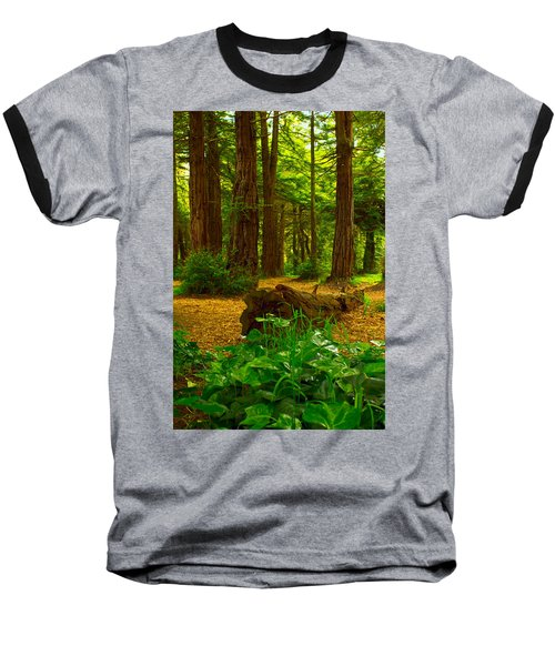 The Forest Of Golden Gate Park Baseball T-Shirt