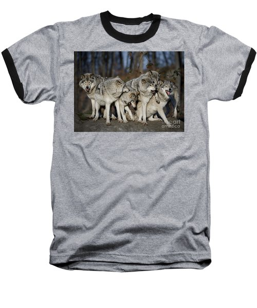 Baseball T-Shirt featuring the photograph The Gang by Wolves Only