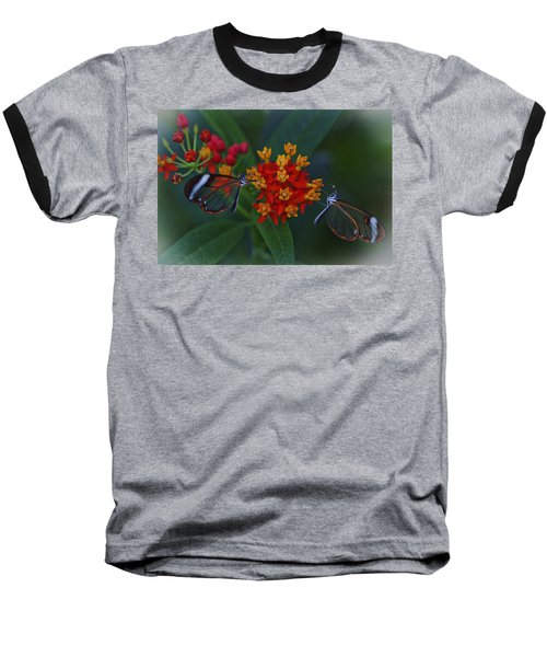 The Glasswinged Butterfly Baseball T-Shirt