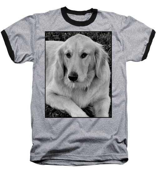 Baseball T-Shirt featuring the photograph The Golden Retriever by James C Thomas