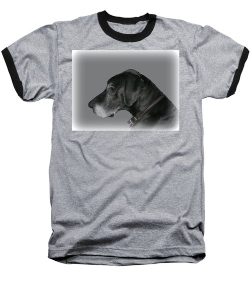 The Great Dane Baseball T-Shirt